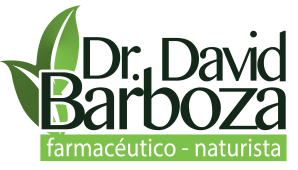 logo David Barboza